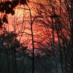 Amo o pr do sol e esse bem avermelhado foihellip