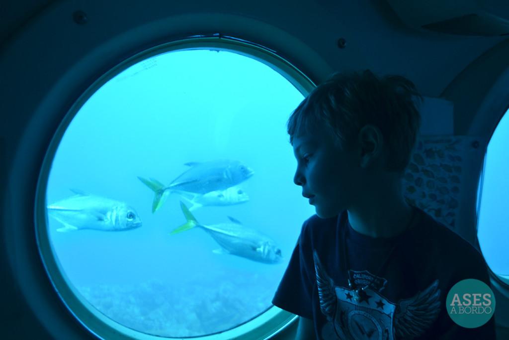 Passeio no Atlantis Submarine - Foto: Ases a Bordo