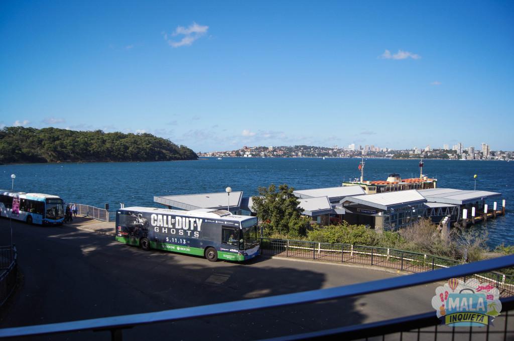 Estação do Ferry e os ônibus, vistos da subida para o Sky Safari