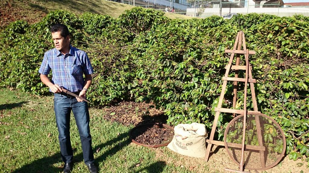Aprendendo sobre a colheita