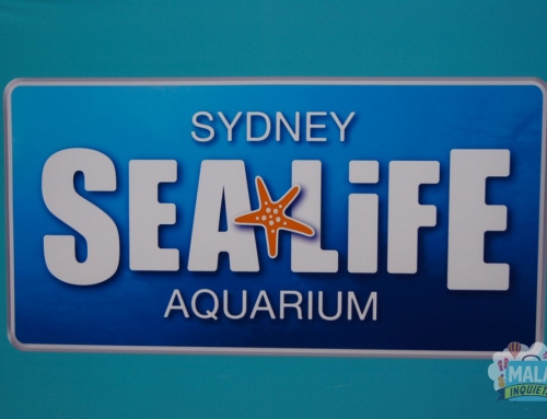 Sea Life Sydney Aquarium – Australia