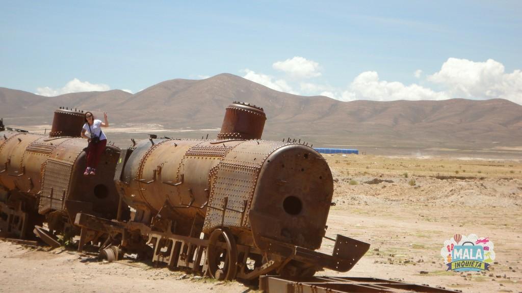 Trem abandonado no Cemiterio de Trens do Salar. Foto: Lisane Monteiro