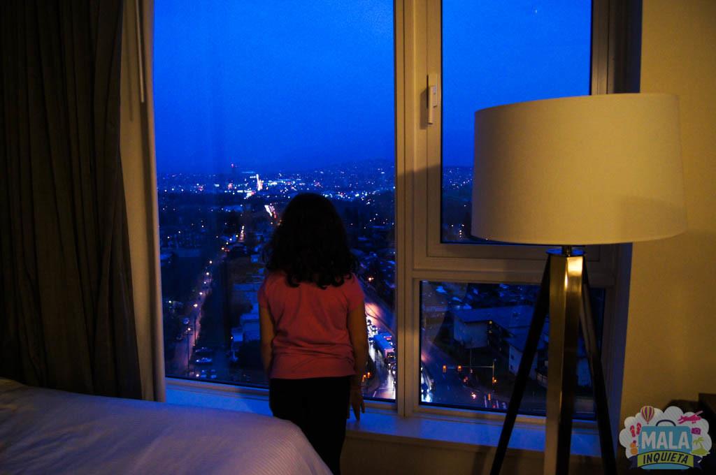 Filhota admirando a vista