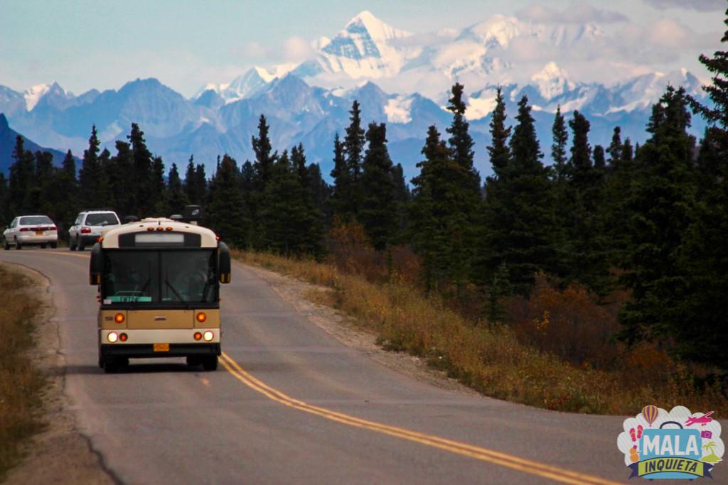 Denali National Park - Foto: Luciana Azevedo