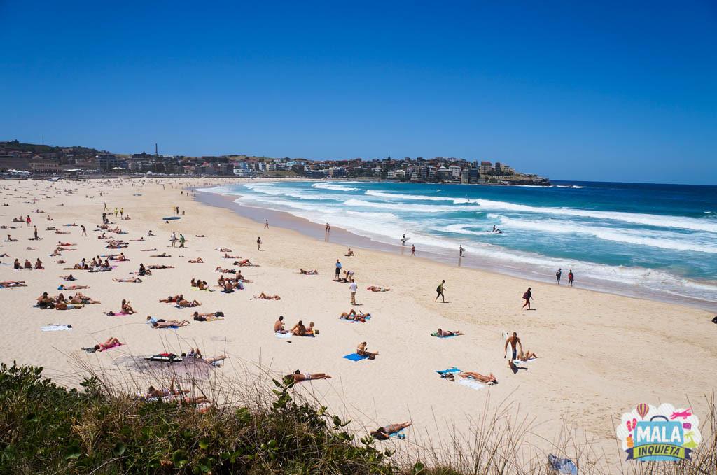 Dia de Sol em Bondi Beach - Foto: Giulia Sampogna