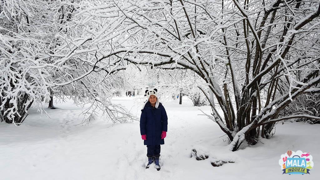Filhota tentando chegar na escola - Foto: Renata Luppi
