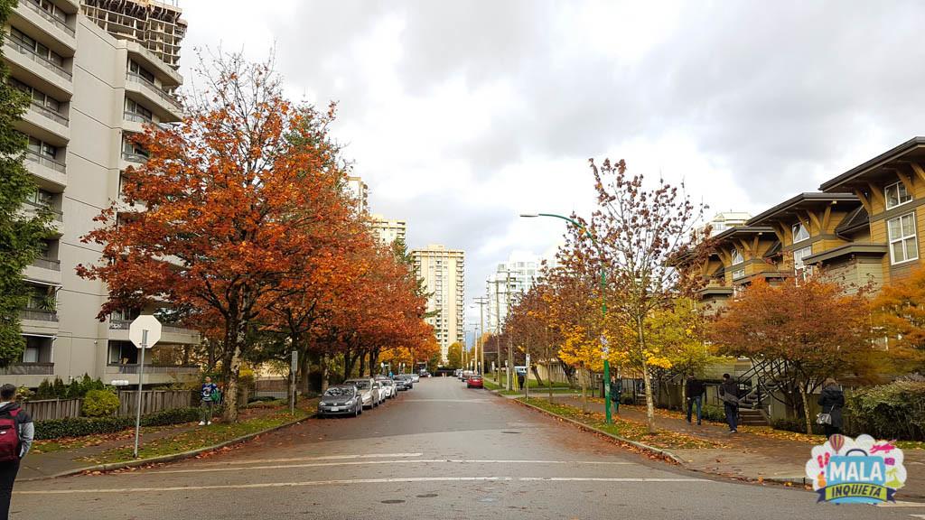 Rua residencial no outono - Foto: Renata Luppi