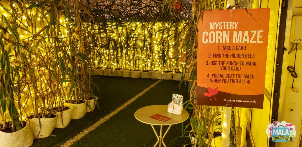 Entrada do Corn Maze | Renata Luppi