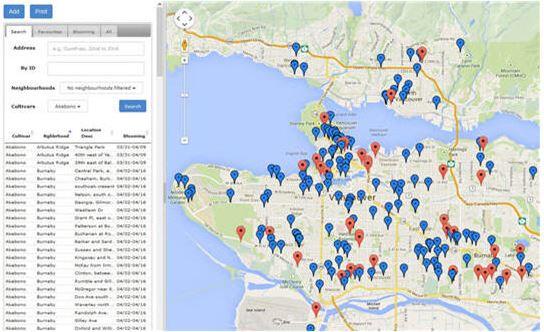 Mapa das cerejeiras - Vancouver Cherry Blossom Festival